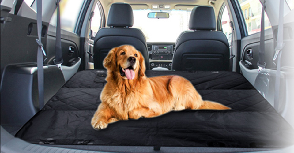 Best-Seat-Covers-for-Dog-Hair