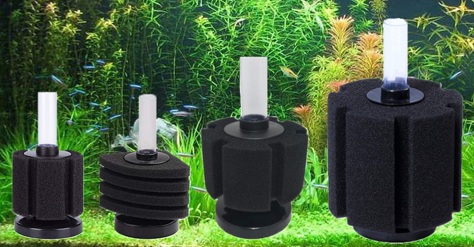 Best-Aquarium-Filter-Sponge-Reviews-By-Consumer-Guide